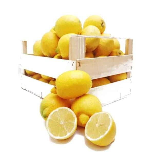 Limone 4 stagioni