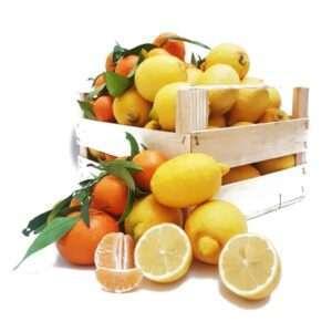 Limoni e clementine calabresi
